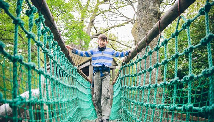 Adventure playground bridge
